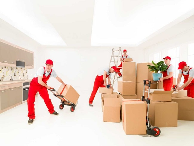 packing by professional movers san rafael